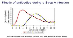 Kinetic of antibodies during a Strep A infection