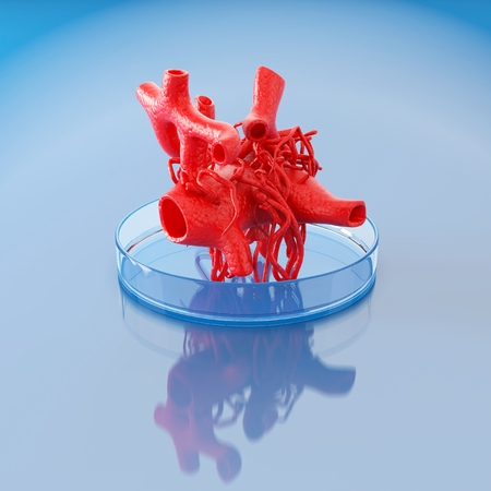 3D Printing of Human Body Parts Becomes Reality
